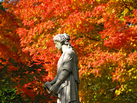 Mt Auburn Cemetery in the Fall